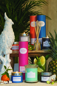 Polka Dot Collection Candle Or Reed Diffuser