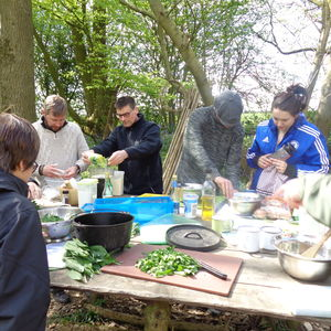 Wild Foraging On The Kent Downs National Park