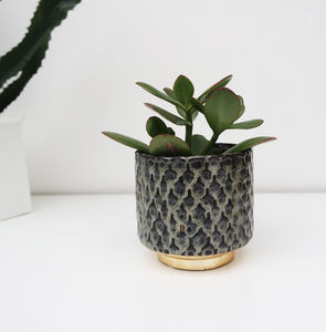 Blue And Gold Plant Pot