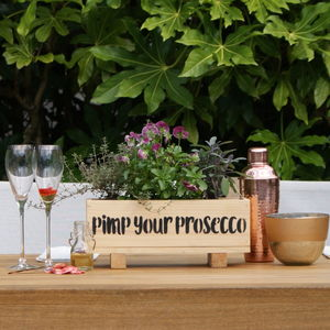 Prosecco Garden Windowsill Planter And Growing Kit