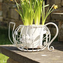Garden Birds Tea Pot Planter