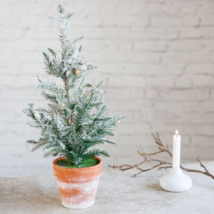 Christmas Tree Icy - christmas sale