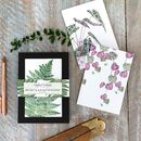 """Greenery"" Boxed Set Of Eight Notecards Plastic Free"