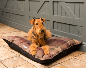 Luxury Tweed Pillow Dog Beds - cosy pet accessories