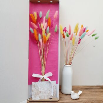Tall Happy Bunny Tails Letterbox Dried Flowers