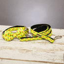 The Soho Pineapple Dog Collar Bow Tie And Lead Set