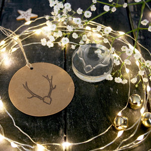 Native Stags Head Crystal Clear Stamp - cards & wrap