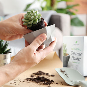Concrete Planter Making Kit - table decoration