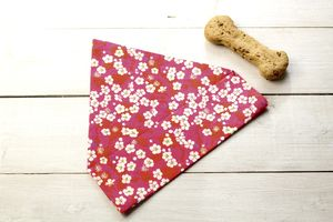 Sasha Liberty Fabric Dog Bandana - dogs