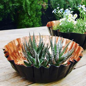 Copper Pleated Planting Bowl Or Tealight Holder