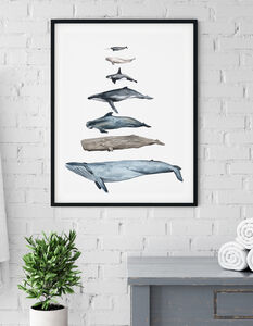Whales Of The Ocean Print In Scale