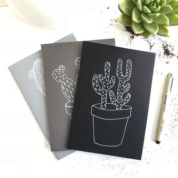 Set Of Three Cactus Drawing Notebooks