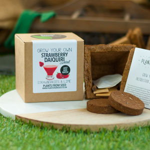 Grow Your Own Strawberry Daiquiri Cocktail Plant Kit - gifts for friends