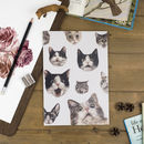 Omg Cats Lined Recycled Notebook