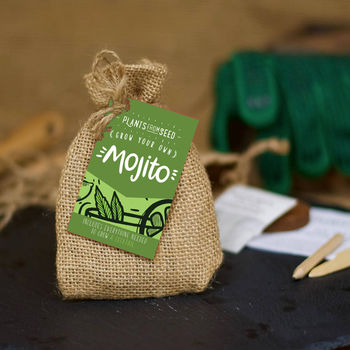 Grow Your Own Mojito Cocktail Mini Plant Kit