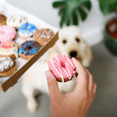Doggy Donut Treats