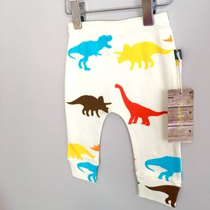 Multi Coloured Dinosaur Print Organic Baby Leggings