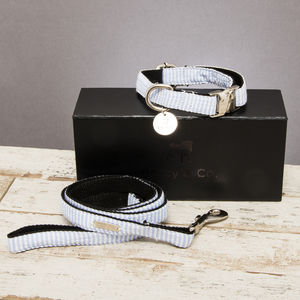 The Putney Blue Striped Dog Collar And Lead Set - new in pets