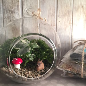 Fairy Garden Diy Terrarium Kit