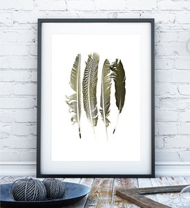 Contemporary Feathers Print