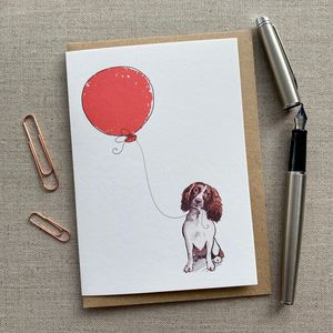 Personalised Springer Spaniel Birthday Card