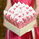 25 Biodegradable Wedding Petal Confetti Cones