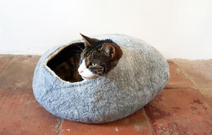 Natural Felt Cat Pet Bed And Ball