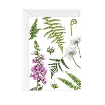 Botanical Foxglove And Ferns Card