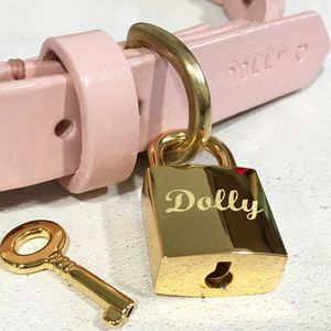 Personalised Pet Name Square Padlock Dog Tag