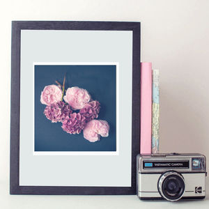 Flower Rose Hydrangea Pink Photography Print - still life
