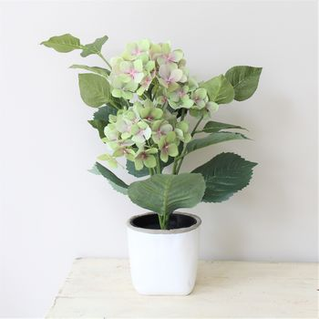 Contemporary White And Grey Cement Planter