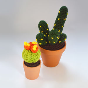 Crocheted Amigurumi Cactus Duo