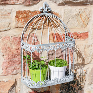 Antique Caged Plant Display - art & decorations