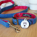 Personalised Dog Tag And Collar Pix And Mix Gift Set