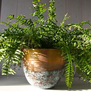 Copper Or Brass Verdigris Planter - pots & planters