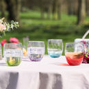 Luxury Colourful 'Fizz' Handblown Tumblers