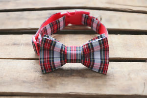 Tartan Collar With Bowtie And Optional Name
