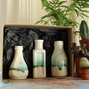 Gift Set Of Three Bottle Vases