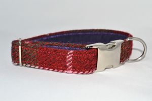 Check Harris Tweed Dog Collar - clothes