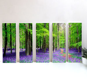 Blue Bells Iv, England - nature & landscape