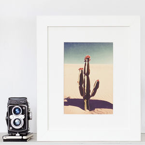 Desert Cactus Bloom Fine Art Print - posters & prints