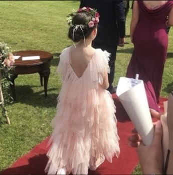 Seraphina ~ Tulle Flower Girl Dress In Blush Pink