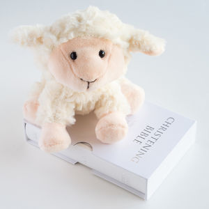 Little Lamb And Bible Christening Set