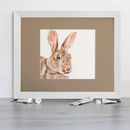 Isabel's Wild Rabbit Signed Mounted Giclée Print