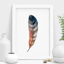 Peacock Feather Watercolour Illustration Print