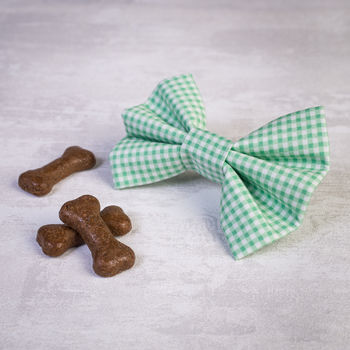 Green Slide On Collar Bow/Bowtie For Girl Or Boy Dogs