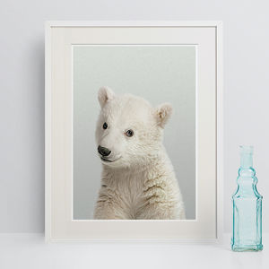 Baby's Room Decor Polar Bear Peekaboo Animal Print