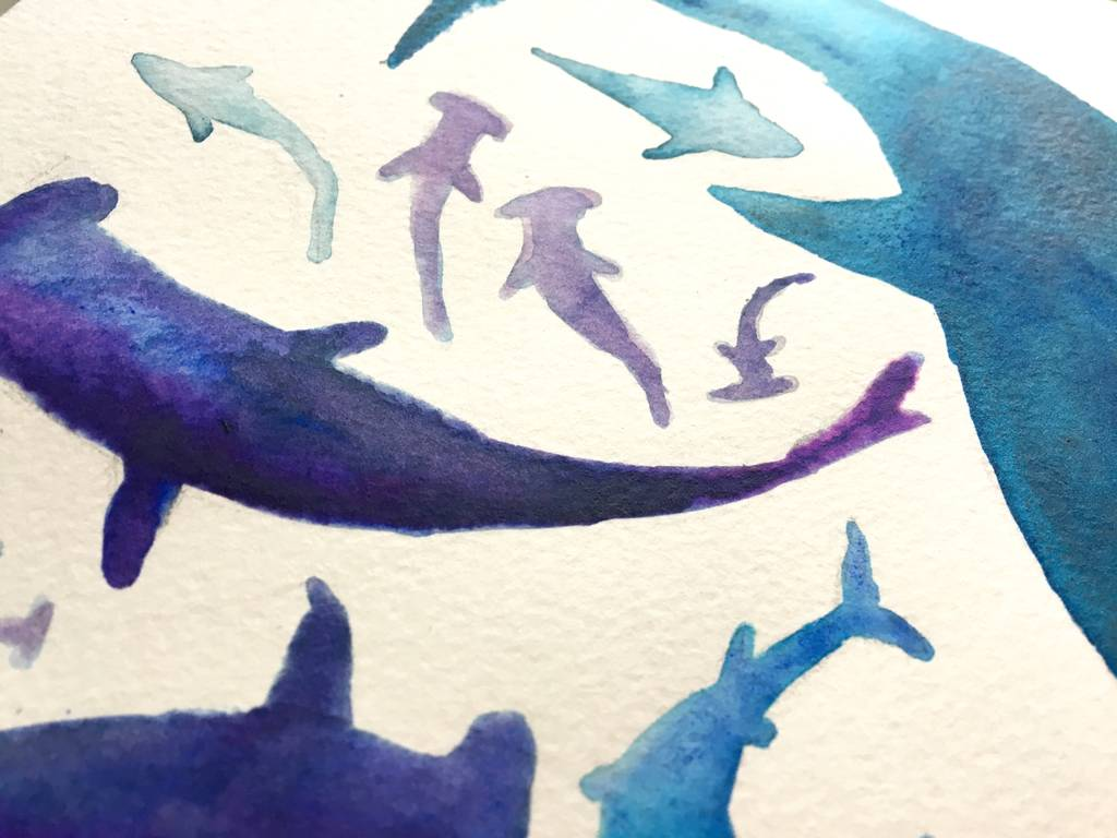 frenzy of sharks illustration giclee print by victoriadraws ...