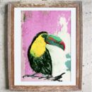 Jungle Bird Limited Edition Print