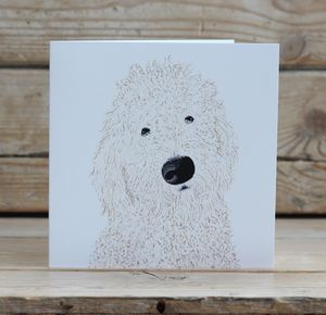 Labradoodle Dog Card - blank cards